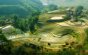 Sapa Express Bus Day Tours